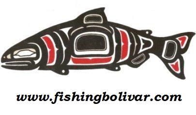 Fishing on bolivar peninsula for Rollover pass fishing report