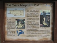 Fort Travis Seashore Park, Bolivar Peninsula, Texas